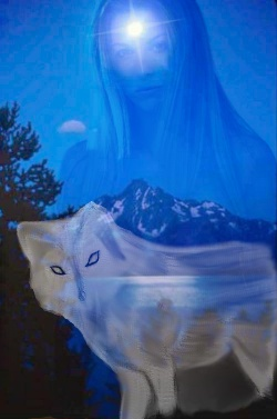 <img:http://willow.creative-interweb.com/images/artwork/people/stephinie/Tuquah_Star_of_the_Skies.jpg>